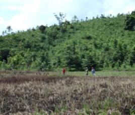 Nachhaltigkeit, der ökologische Fußabdruck von Rappenglitz